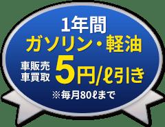 1年間ガソリン・軽油 5円/l引き